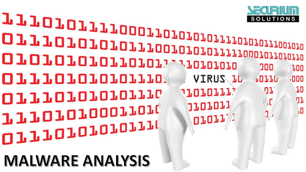 Dynamic Malware Analysis | Securium Solutions Pvt Ltd